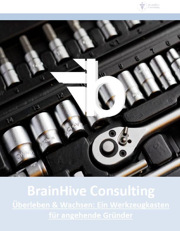 Businessplanberatung-Überleben und Wachsen-BrainHive-Cover-1