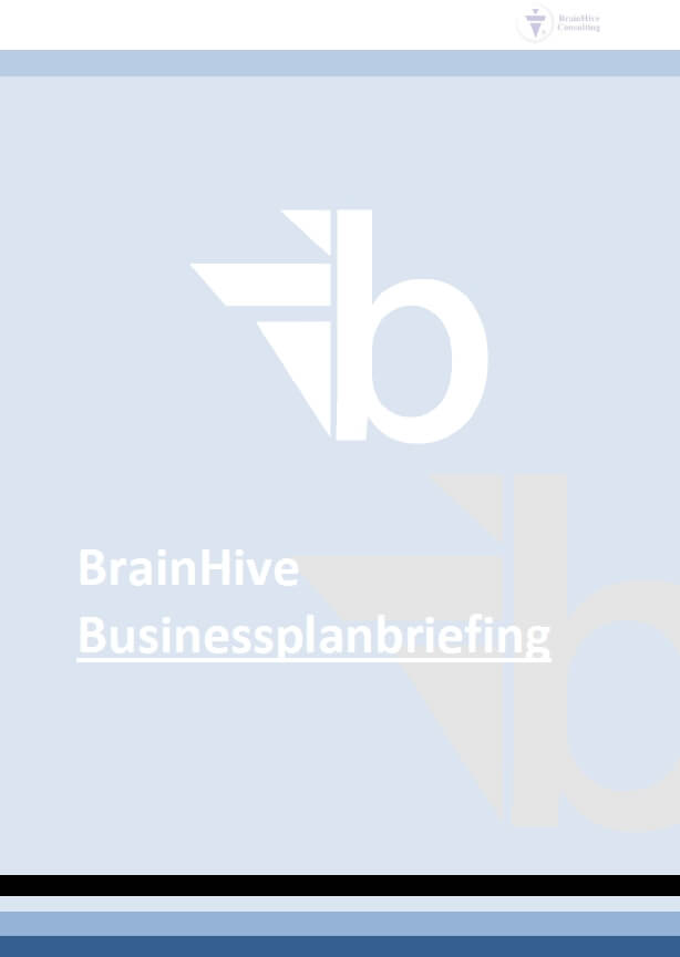 Businessplanberatung-Businessplan erstellen lassen-BrainHive-BRIEFING-1